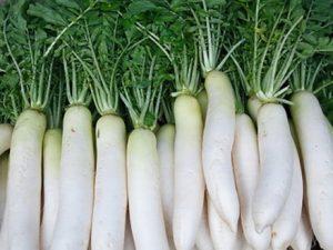 Củ cải là một trong những nguyên nhân làm giảm huyết áp